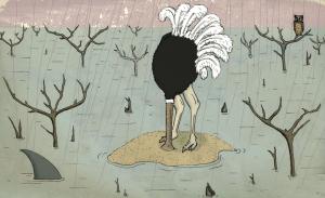 alexmankiewicz.com-ostrich2